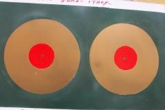 disco doro,mitici anni 60.cm.50X70 anno 2013